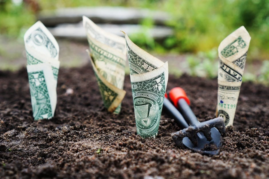 5 Tips To Monetize Your Website
